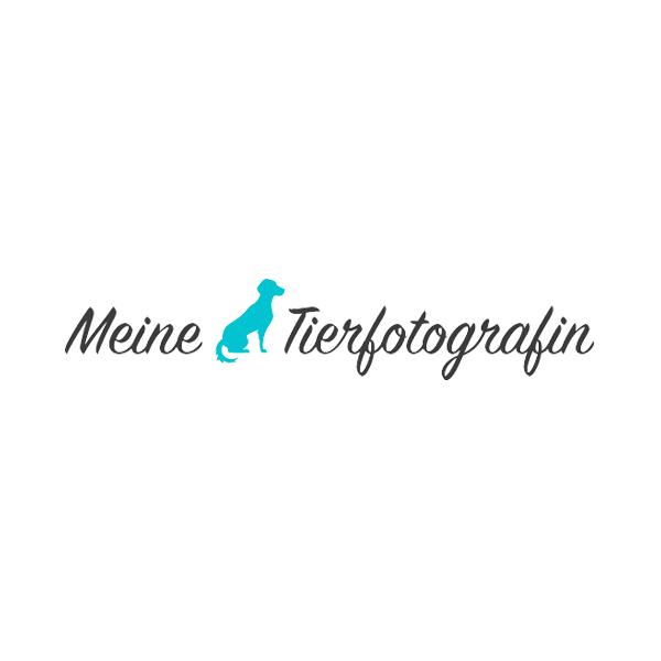 2017 Meine Tierfotografin Gewinnspiel