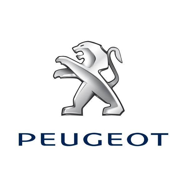 2017 Peugeot Tankaktion